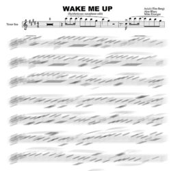 Sheet music Avicii - Wake Me Up