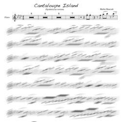 Herbie Hancock - Cantaloupe Island flute