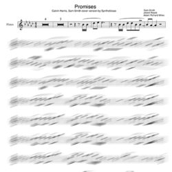 Promises_flute_backing_Tracks_sheet_music